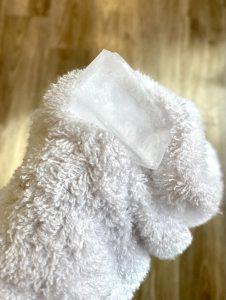 トリアは氷を当てながら脱毛